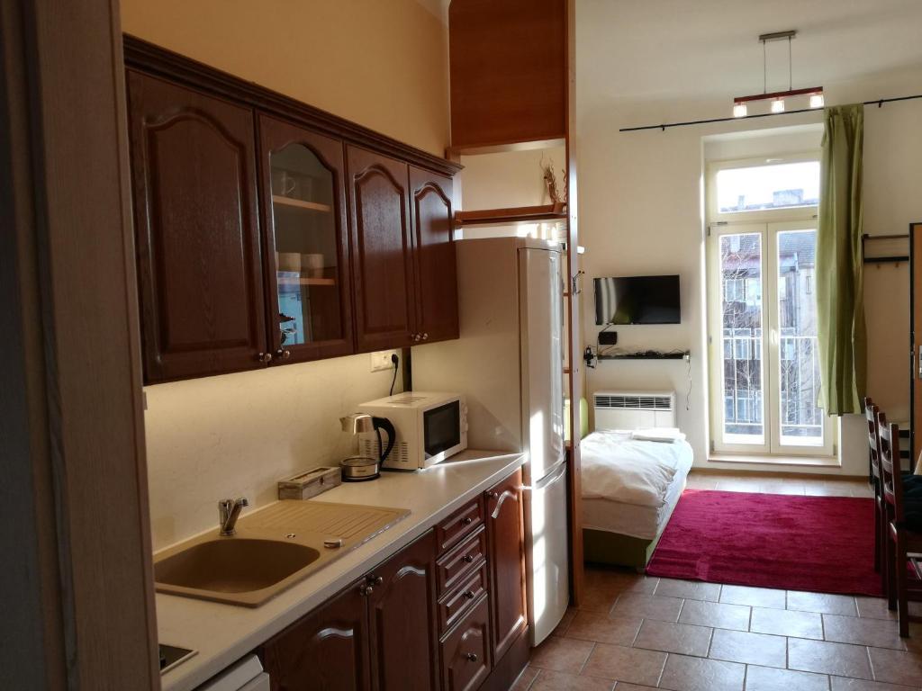 Кухня или мини-кухня в Apartmány Řehořova