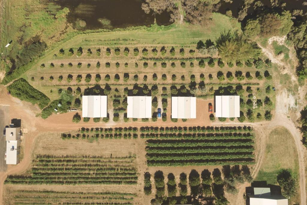 A bird's-eye view of Swan Valley Sisters