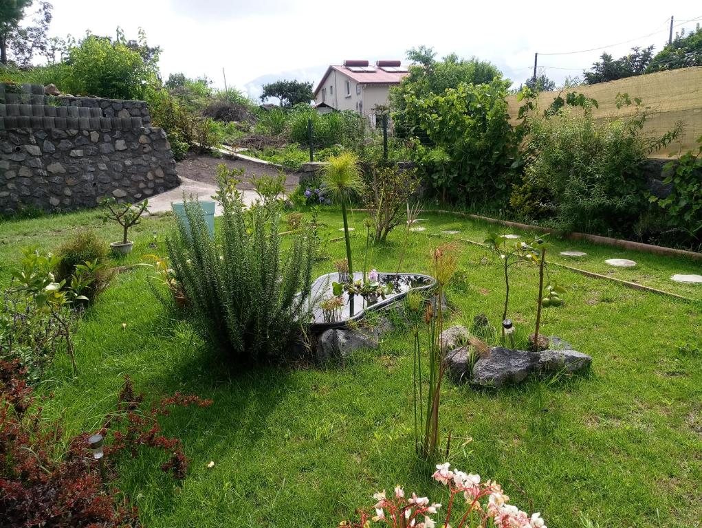 Apartment Les Jardins Creoles Cilaos Reunion Booking Com