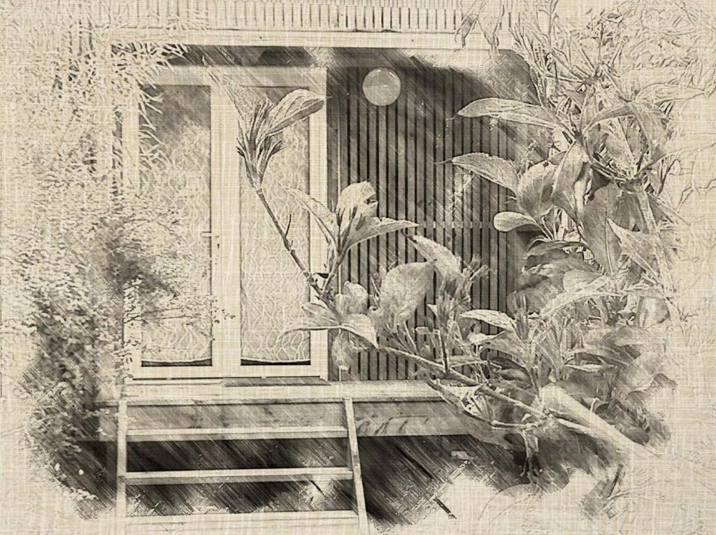 L'établissement Le Cocon en hiver