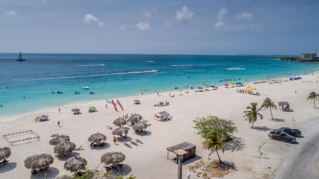 Eagle Beach Aruba Reviews The Best Beaches In World