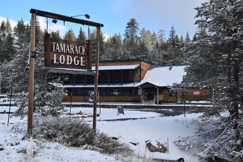 Bear Valley Ca >> Tamarack Lodge At Bear Valley Ca Booking Com