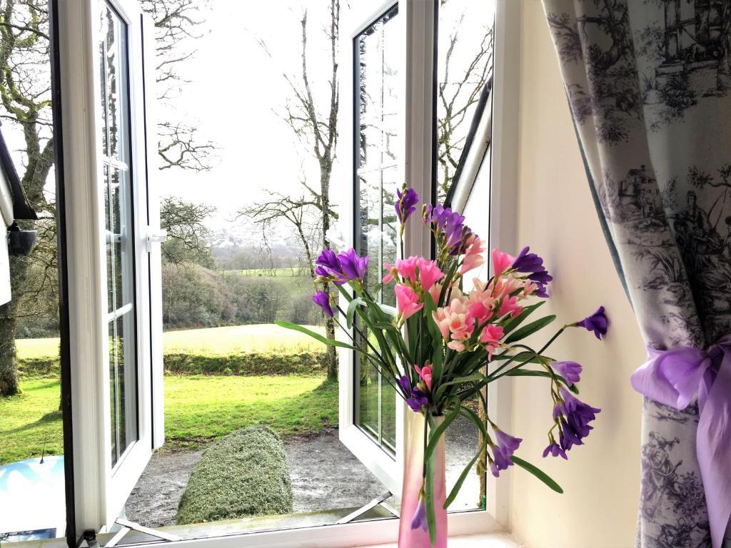 Meadow sweet cottage okehampton updated 2018 prices gallery image of this property izmirmasajfo