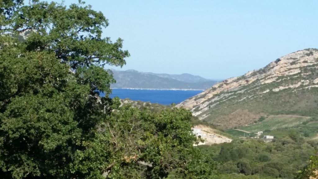 Apartments In Patrimonio Corsica
