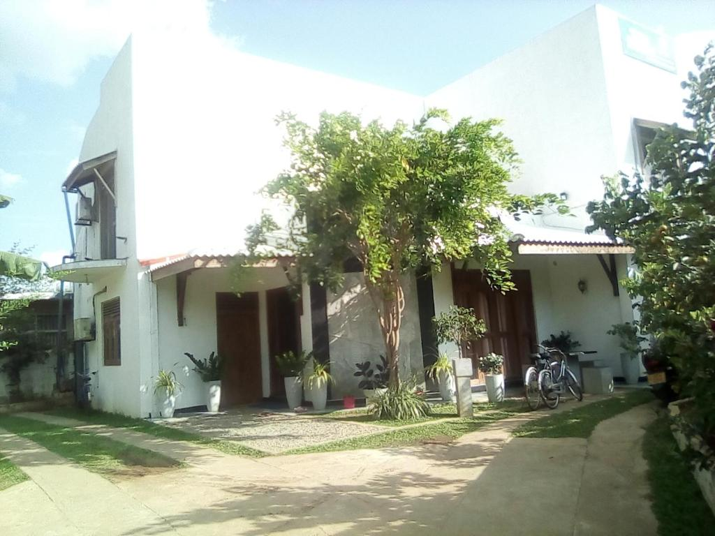 Tree House Holiday Home, Anuradhapura – Updated 2018 Prices on log cabin homes designs, water homes designs, tropical homes designs, wood homes designs, bathroom homes designs, hawaii homes designs, island homes designs, beach homes designs, tree house stair designs, barn homes designs, workshop homes designs, modern family homes designs, ocean homes designs, cottage homes designs, earthquake homes designs, green homes designs, livable tree house designs, bungalow homes designs, best tree house designs, summer homes designs,