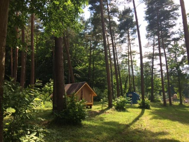 A garden outside Camping Osenbach
