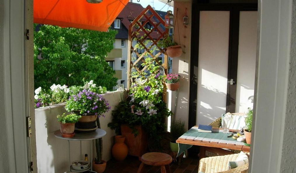 Hotels in der Nähe : Freiraum in Freiburg