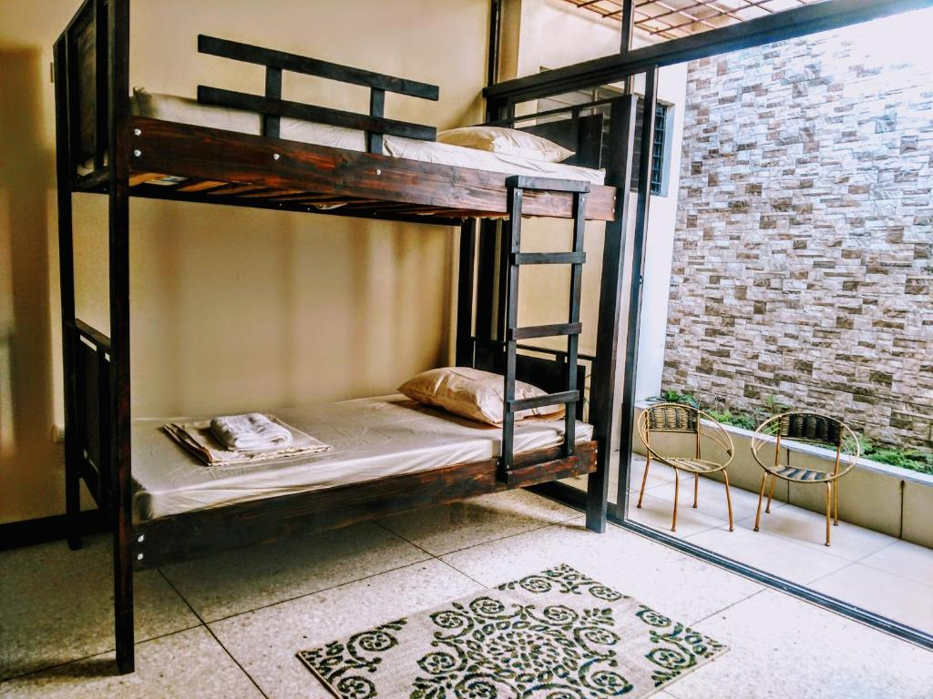 A bunk bed or bunk beds in a room at Stray Cat Hostel