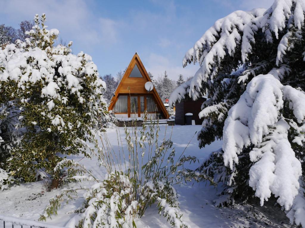 Ferienhaus im Nordschwarzwald - Nurdachhaus in Waldrandlage ...