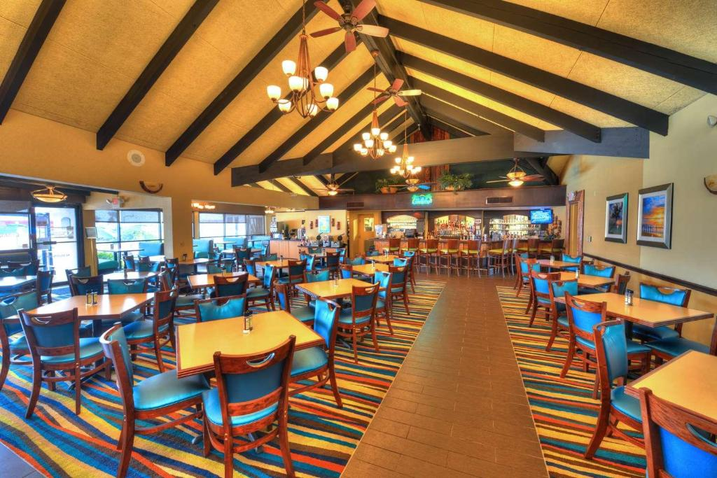 Best Western Aku Tiki Inn Reserve Now Gallery Image Of This Property
