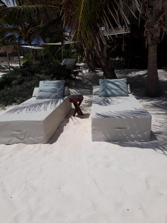 Azucar Hotel Tulum during the winter