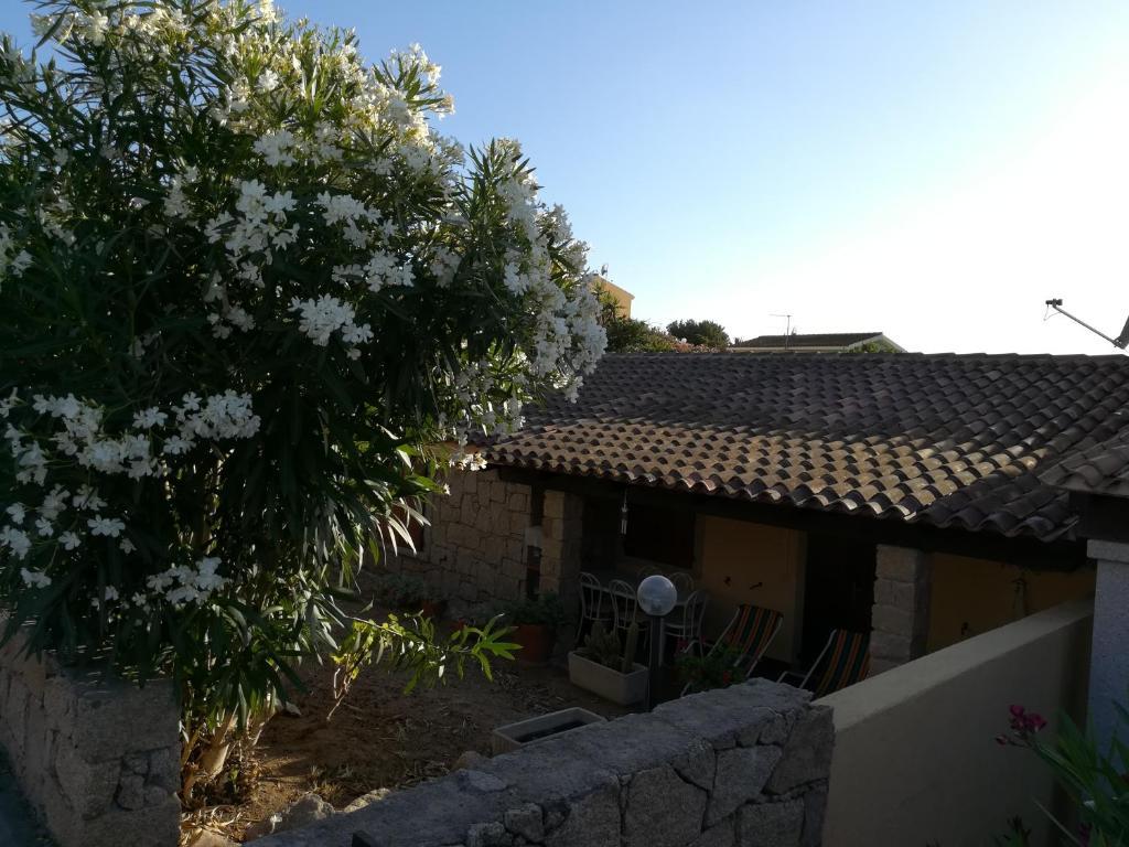 Apartments In Aglientu Sardinia