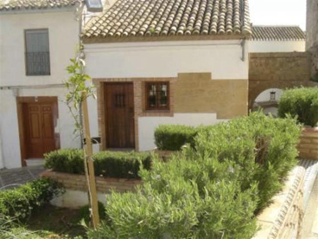 Apartments In Zambra Andalucía