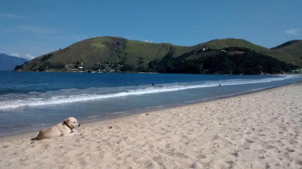 4532cab323978 Casa de Vidro na Praia