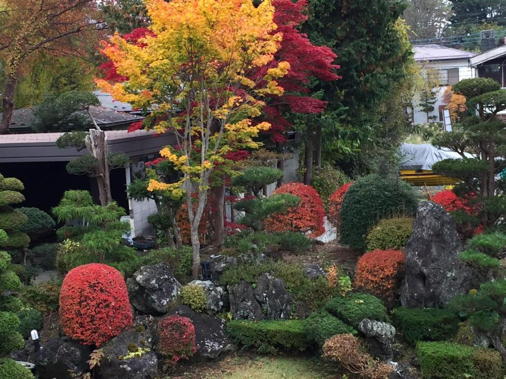 A garden outside Togawaso