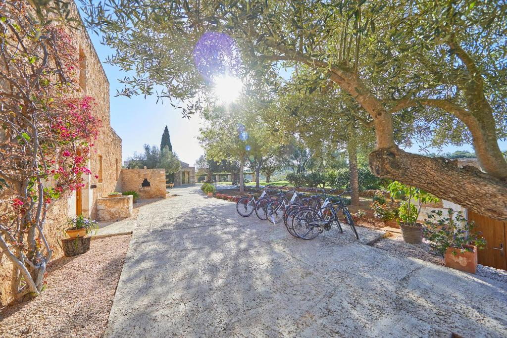 boutique hotels in sant llorenç des cardassar  29