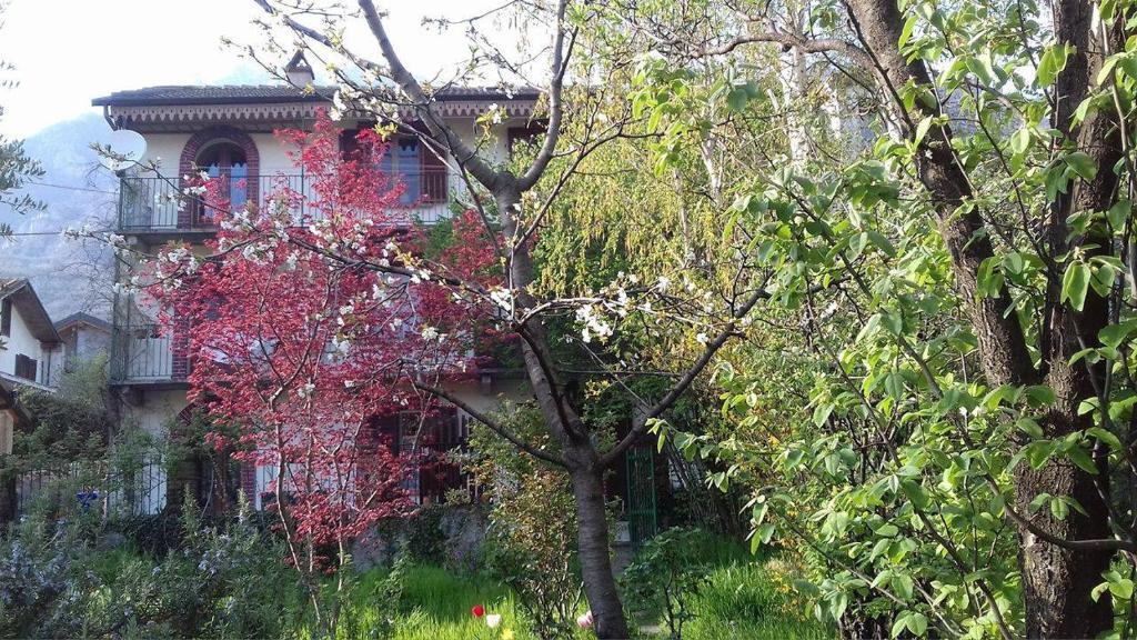 La Credenza Bussoleno Orari : Il giardino dei merli bussoleno u prezzi aggiornati per