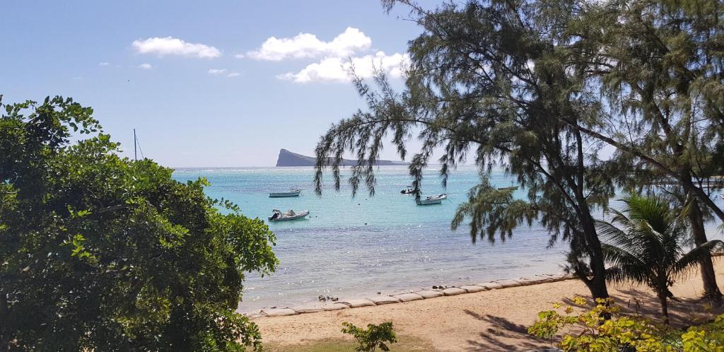 Allamanda Studios & Apartments (Mauritius Bain Boeuf) - Booking.com