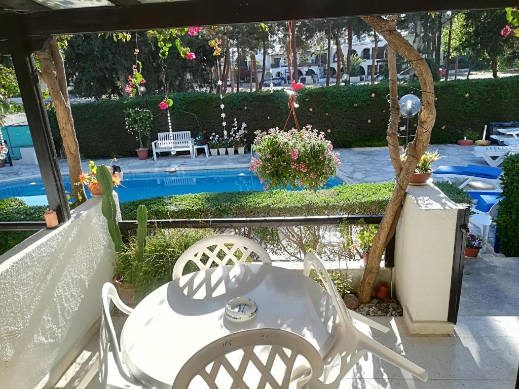 Hotel Dionysos Central 3 (Cyprus, Paphos): location and infrastructure of the hotel, room description, service, reviews 34