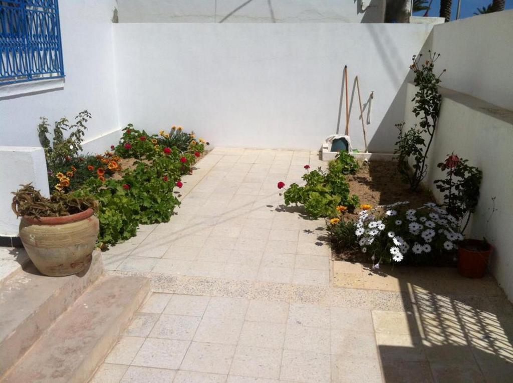 L Espadon De Mahdia Maison Avec Petit Jardin Mahdia Updated
