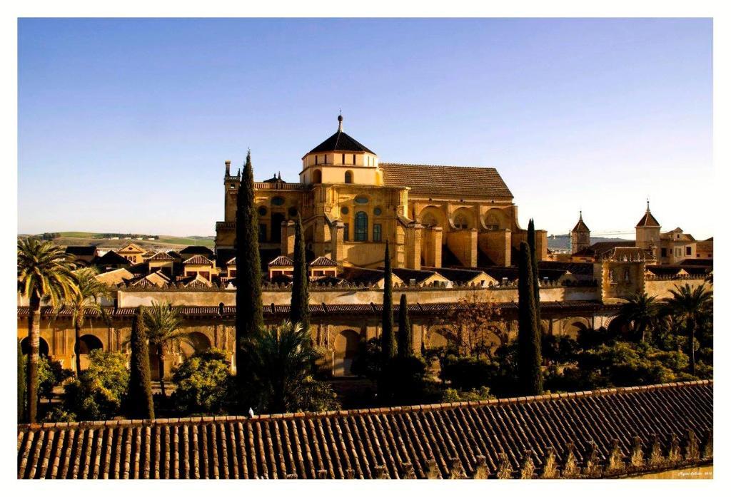 Escort girls in Córdoba