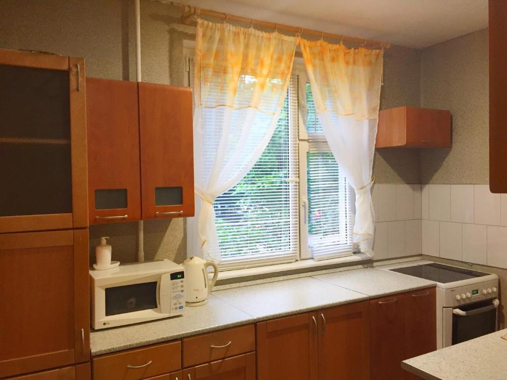Кухня или мини-кухня в Hostel Modern Dybenko
