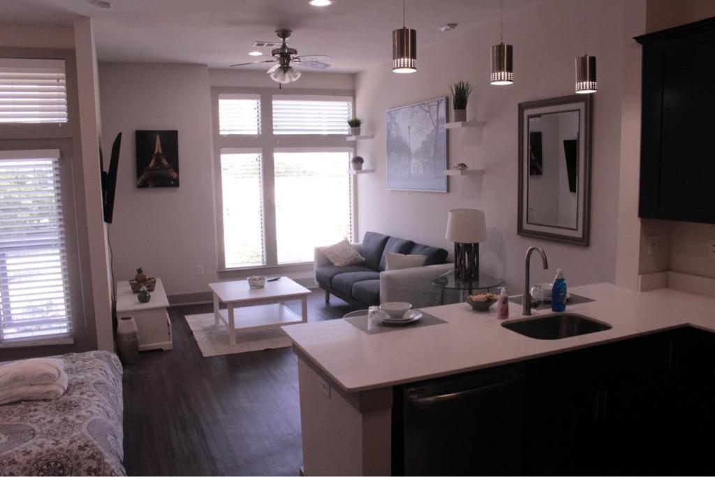 Houston One Bedroom Apartments Luxury