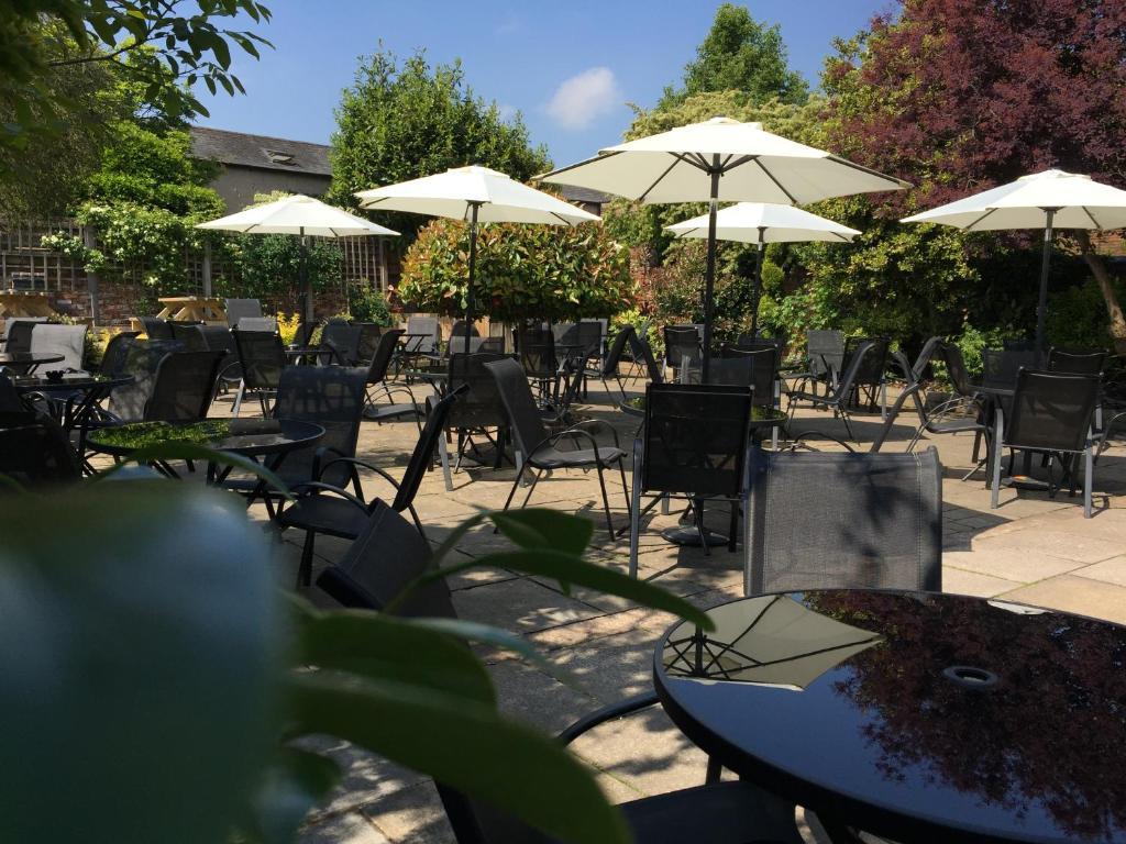 +154 Backyard Bar And Grill Poland Ohio | Home Decor