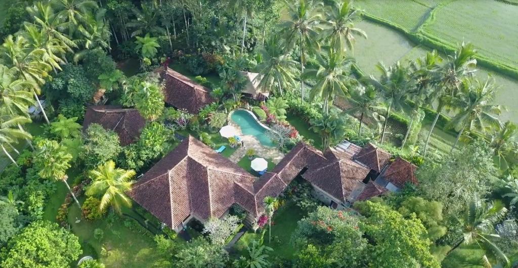 Villa Orchid Bali Indonesien Ubud Booking Com