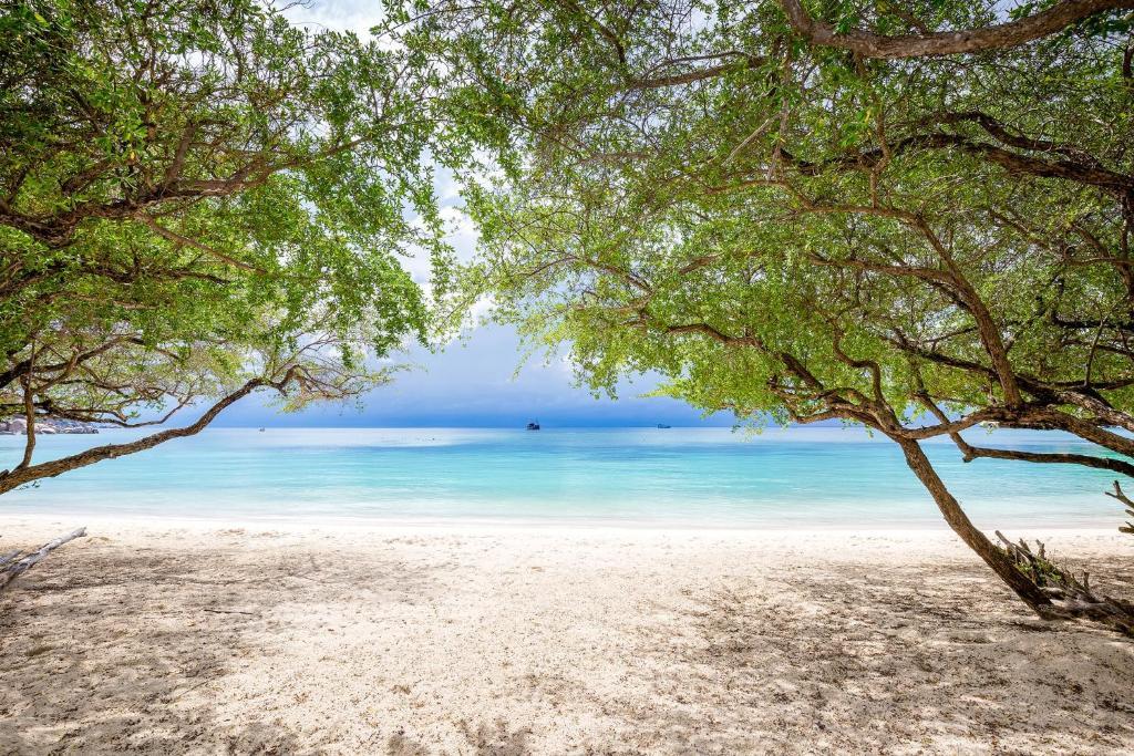 Haadtien Beach Resort Reserve Now Gallery Image Of This Property