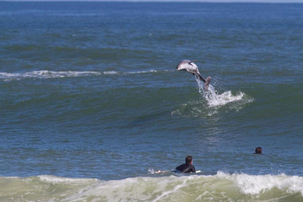 New Symrna Beach >> Vacation Home Nsb Beach Nest 101 New Smyrna Beach Fl Booking Com
