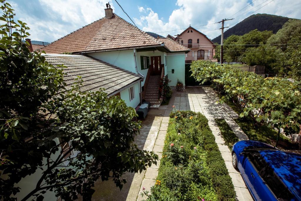 Hotelul transylvania in romana online dating