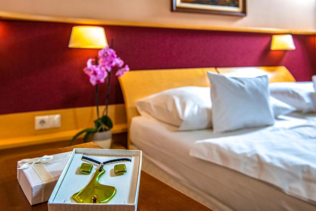 Dráva Hotel Thermal Resort