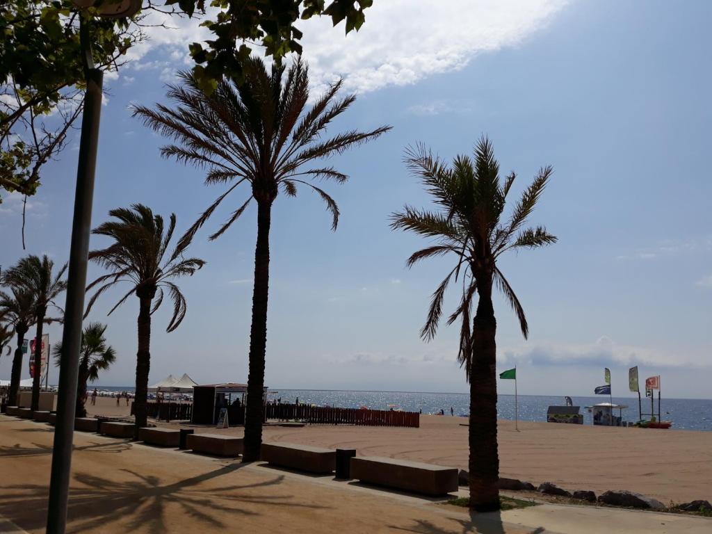 Apartaments Mar Blau Calella Tarifs 2019