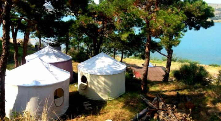 Etagenbett Camping : Camping geversduin bewertungen fotos castricum niederlande