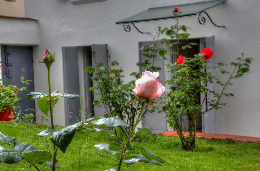 Jardin de l'établissement La Parenthèse