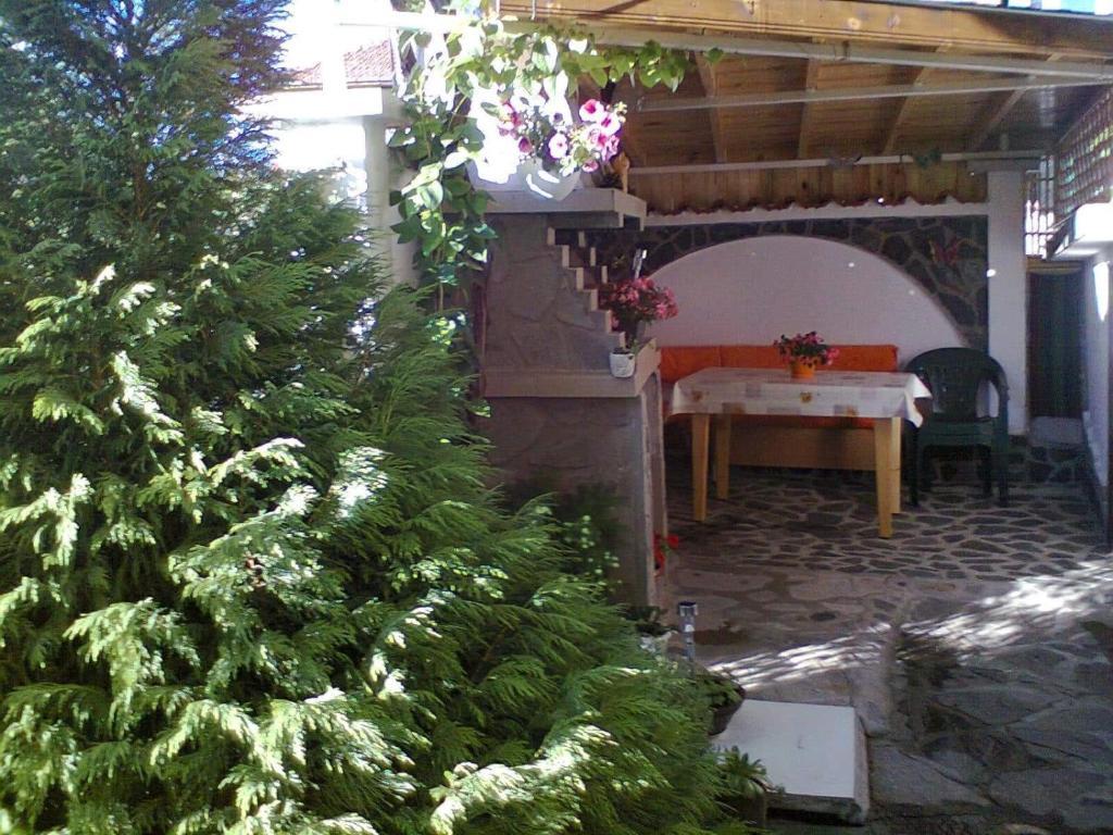 Апартамент Guest House Vesi - Сапарева Баня