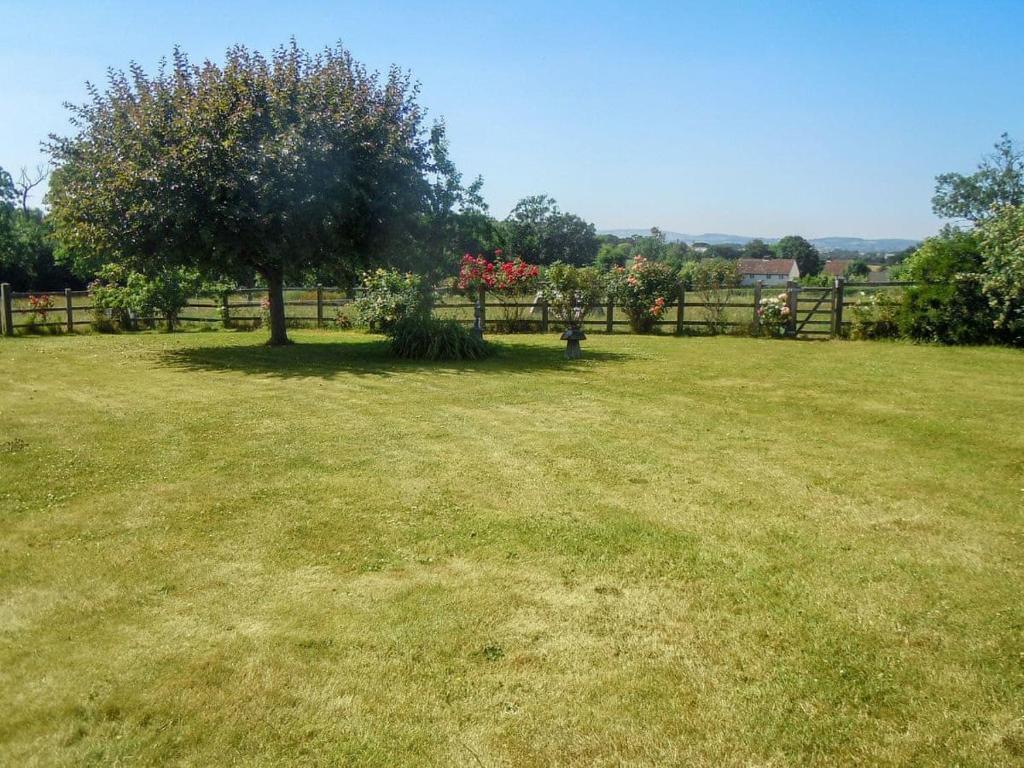 A garden outside Elm Farm Cottage