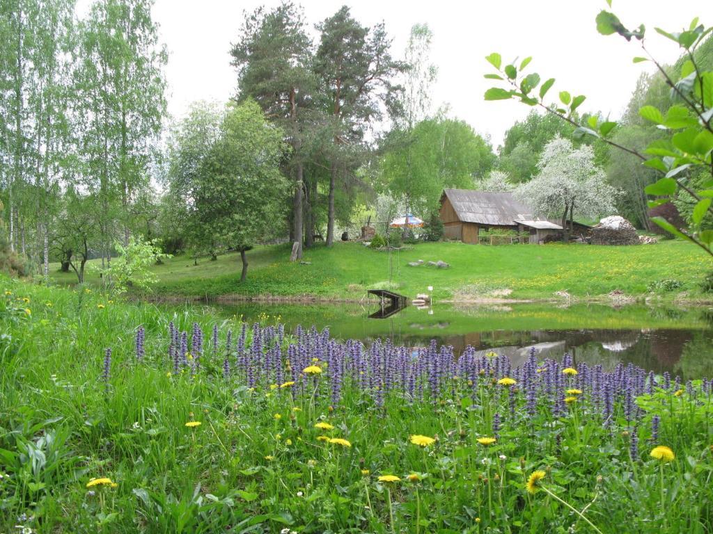 Ogród w obiekcie Manor Ustas