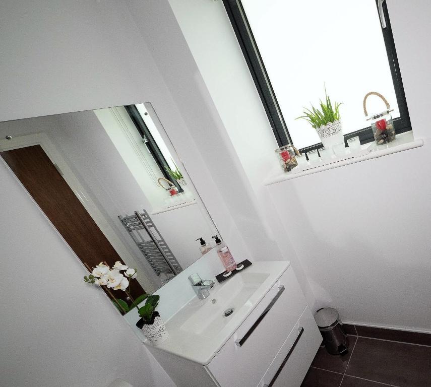 Luxe Apartments Birmingham, Birmingham