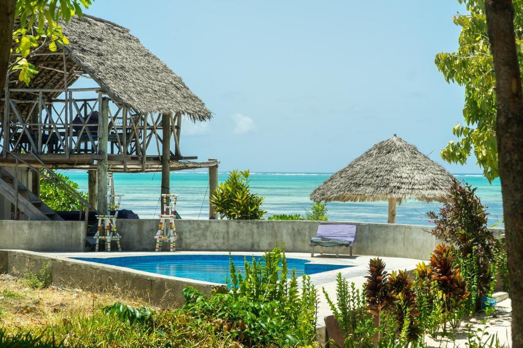 changu beach resort jambiani updated 2019 prices rh booking com