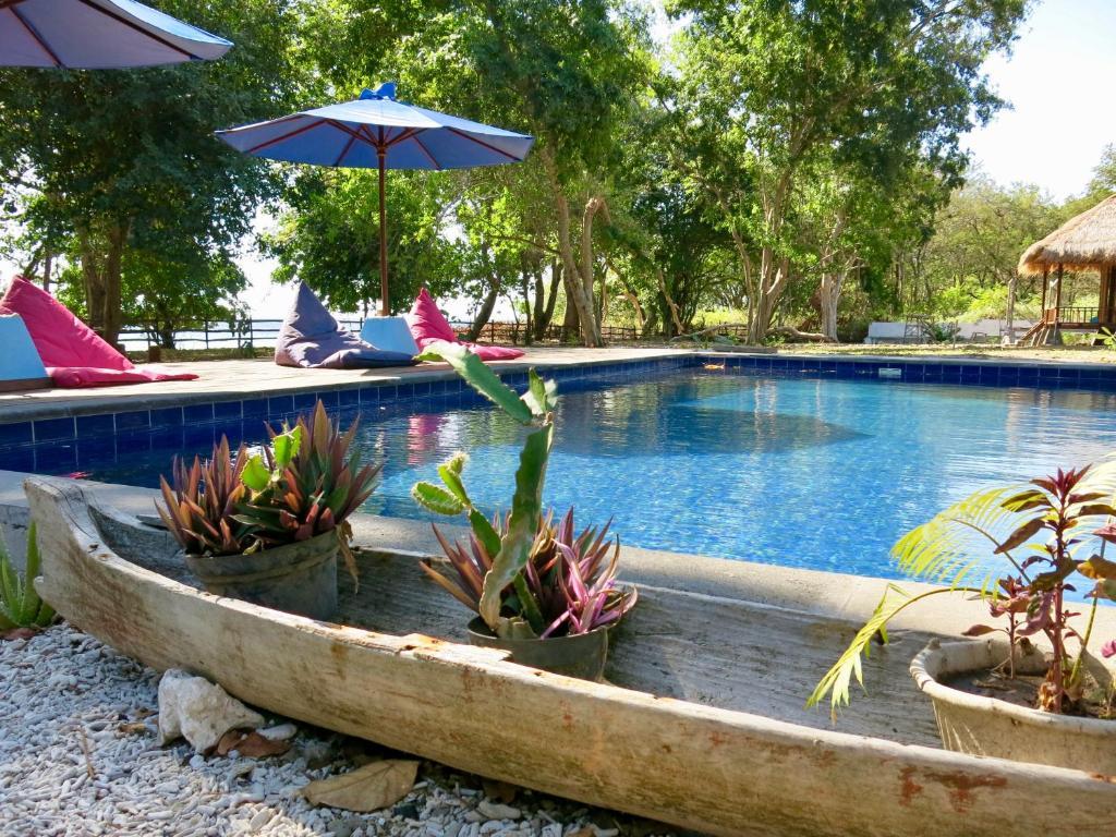 blue emocean resort dive center moyo island indonesia booking com rh booking com