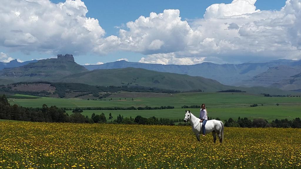 Online dating στη Νότια Αφρική δωρεάν