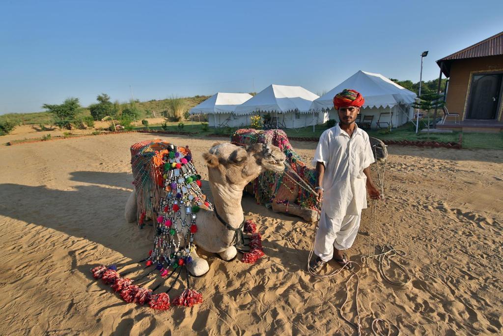 Image result for Desert Safari in Pushkar