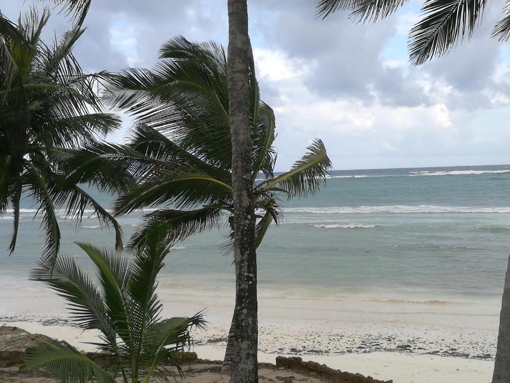 Casa Desqua Diani Beach Updated 2019 Prices