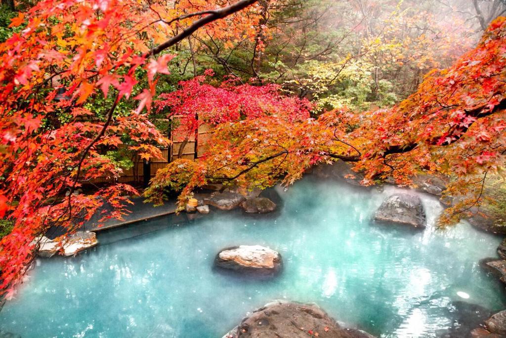 ポイント1.四季の景色を映し出す露天風呂
