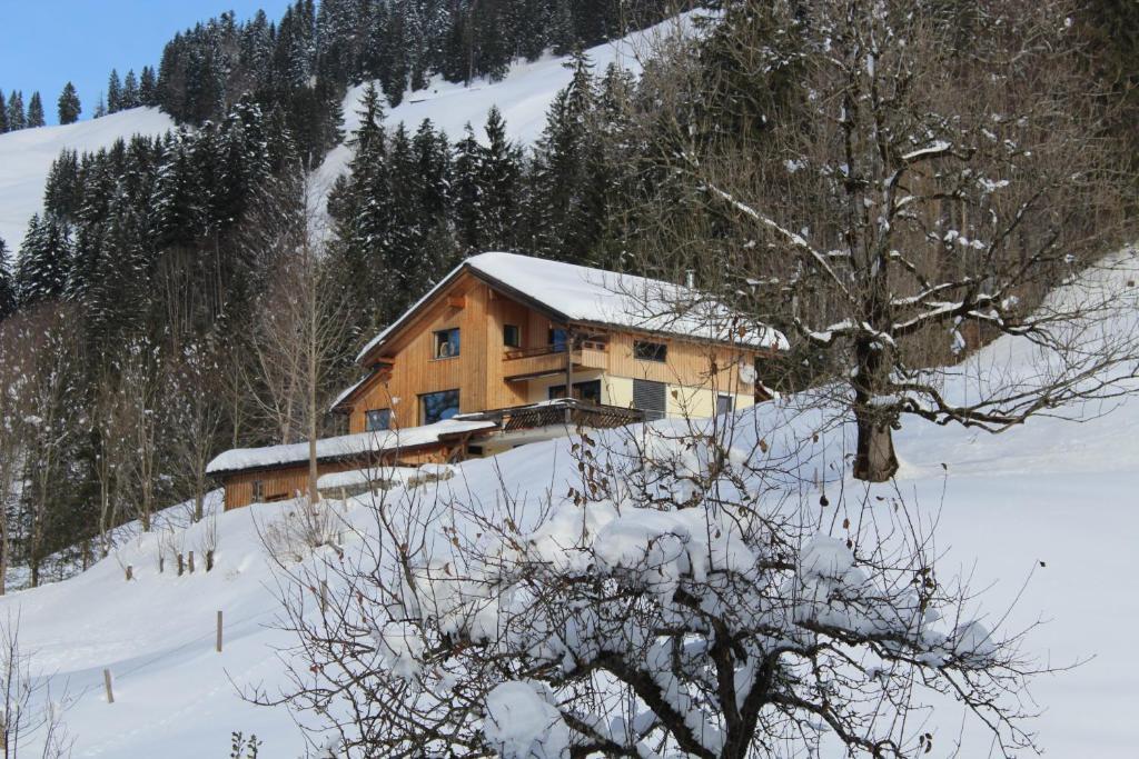 Apartment nest sibratsgfäll u2013 prezzi aggiornati per il 2019
