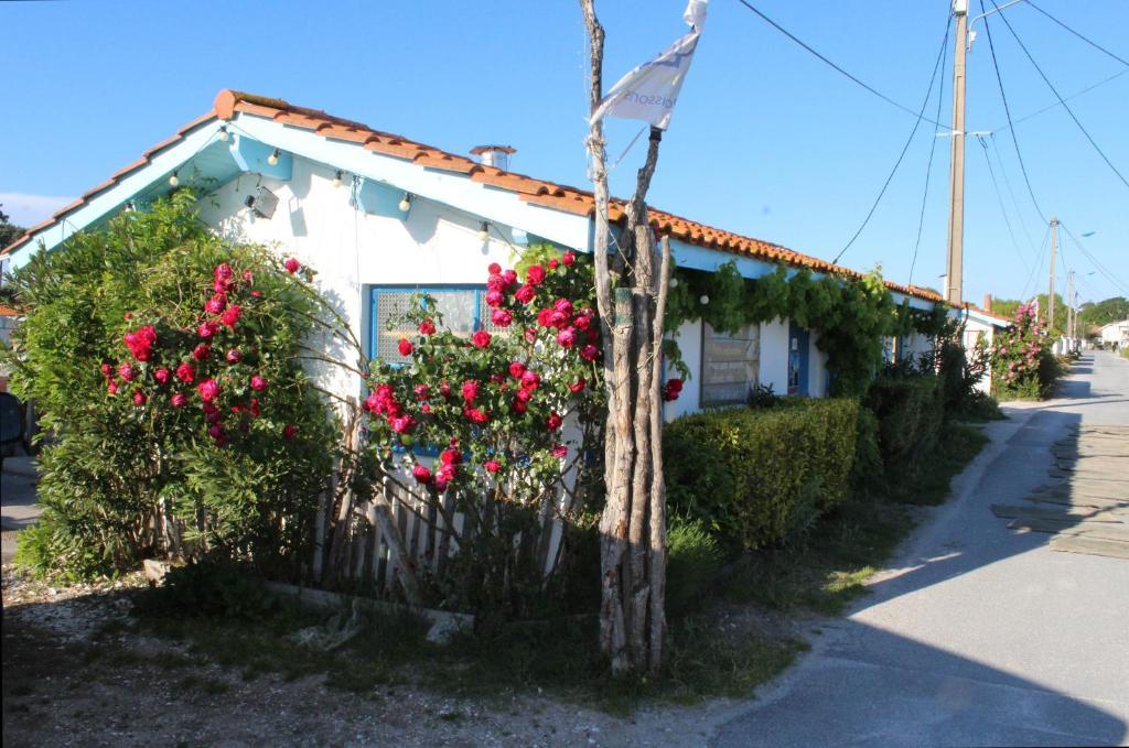 Maison 4 chambres près du port ostréicole, Andernos-les ...