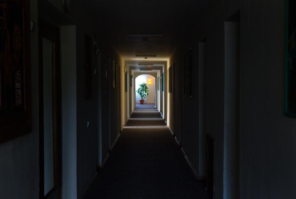 Dzukija Hotel