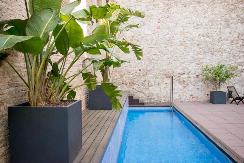Swimming pool sa o malapit sa Onix Liceo